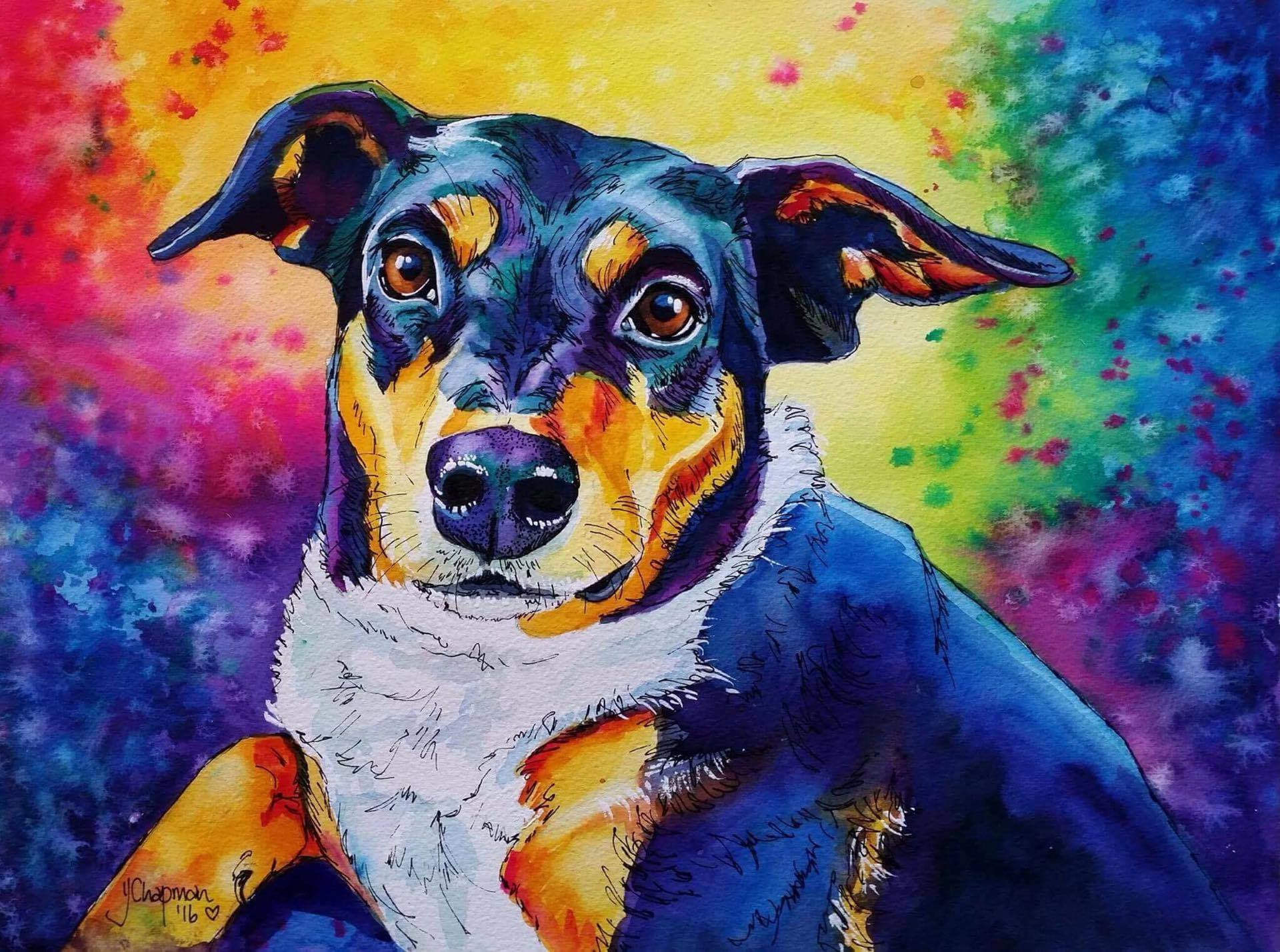 Eyes - Rushton Dog Rescue