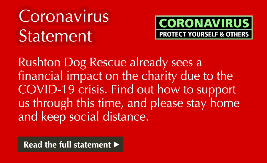 COVID-19 Statement - Rushton Dog Rescue already sees a financial impact on the charity due to the COVID-19 crisis. Find out how to support us through this time, and please stay home and keep social distance.