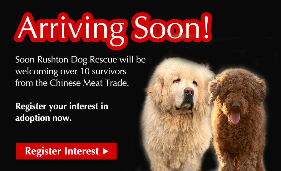 Arriving Soon! Register your interest now!