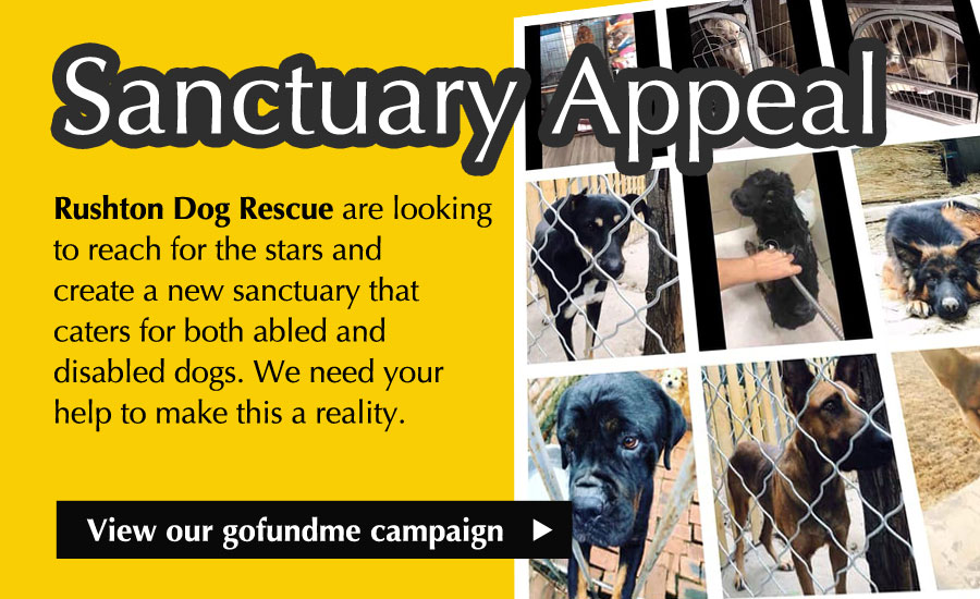Sanctuary Appeal