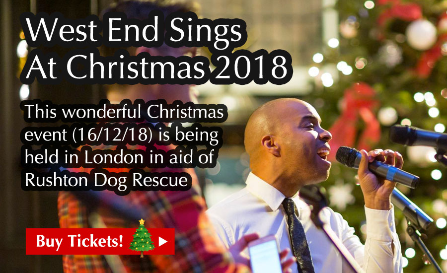 West End Sings At Christmas 2018 - This wonderful Christmas event (16/12/18) is being held in London in aid of Rushton Dog Rescue - Buy Tickets