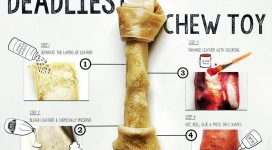 Rawhide Chew Toy