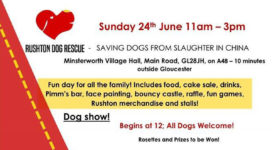 Sunday 24th June 2018 - 11am to 3pm